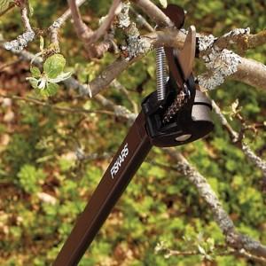 Eine Schneidgiraffe kann selbst Äste weit oben in Bäumen schneiden.